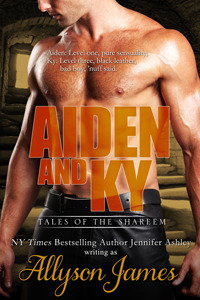 Aiden and Ky (2013) by Allyson James