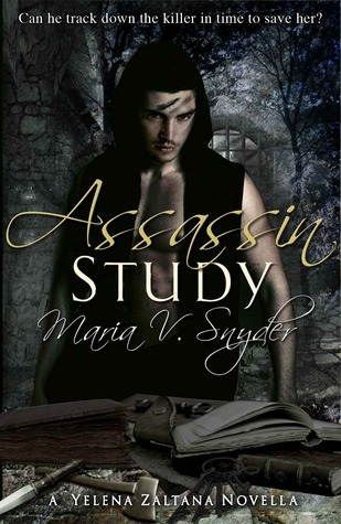 Assassin Study (2008) by Maria V. Snyder