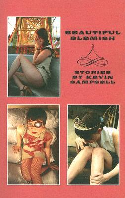 Beautiful Blemish (2005) by Kevin Sampsell