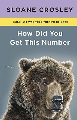 How Did You Get This Number (2010)