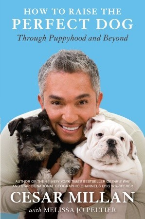 How to Raise the Perfect Dog: Through Puppyhood and Beyond (2009) by Cesar Millan