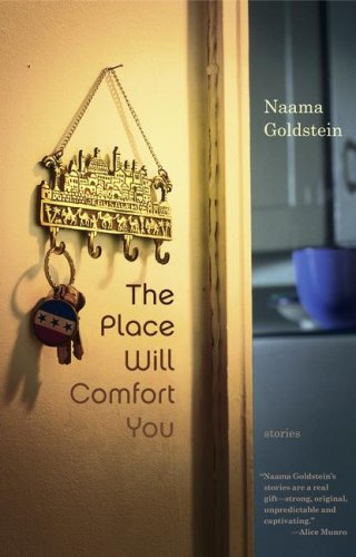 The Place Will Comfort You: Stories (2004)