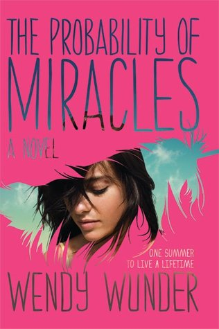 The Probability of Miracles (2011) by Wendy Wunder