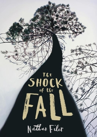 The Shock of the Fall (2013)