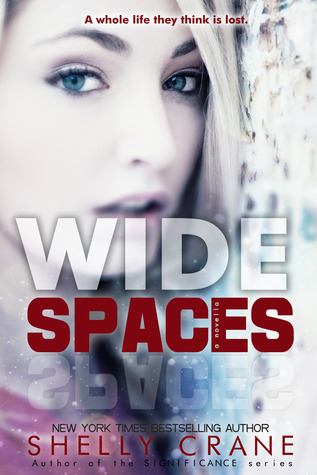 Wide Spaces (2000) by Shelly Crane
